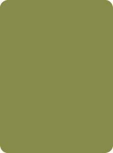 1852 Verde Oliva