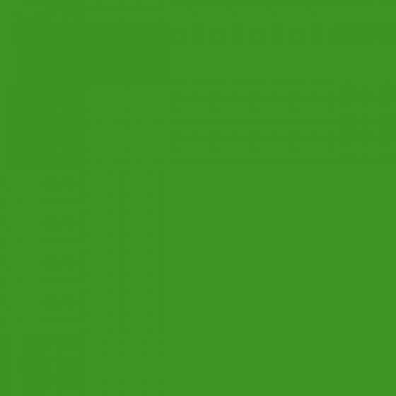 RAL 6018 Verde Giallastro